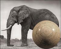 Бильярдные шары из слоновой кости
